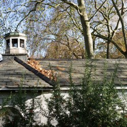 Roofs at Coram's Fields